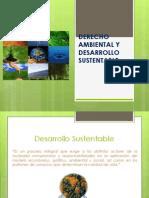 DERECHO AMBIENTAL Y DESARROLLO SUSTENTABLE.pptx