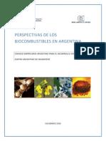 Perspectiva Biocombustibles Argentina