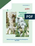Bulletin Mealybugs (English)