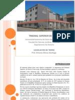 FINAL TRIBUNAL SUPERIOR DE TIERRAS (1).ppt