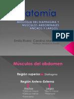 Miologia Del Diafragma y Musculos Abdominales Anchos y Largos