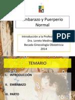 Embarazo y Puerperio Normal