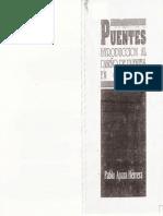 Pablo Apaza Herrera - Puentes - Introduccion Al Diseño de Puentes en Concreto