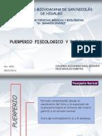 Tema 14 Puerperio Fisiologico y Patologico