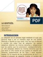 La Adopcion Examen Civil Final