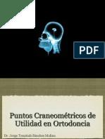 craneometriacopiappt