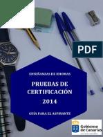 Guia Aspirante PCEI 2014