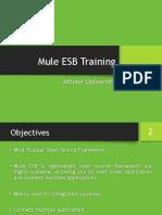 Mule Esb Training.
