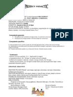 Proiect Didactic- R,r -BILCIURESTI