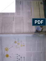 Concepção e Desenvolvmento Fetal. Trabalho de Parto