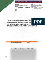 Informe Final Investigacion Educativa