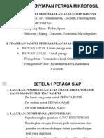 Biostratigrafi Pak Akmal