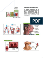Farmacología Respiratoria - Copia