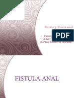 Fistula y Fisura Anal