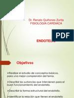 Clase 8 Endotelio