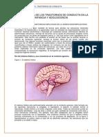 Neurobiologia de La Agresividad