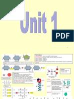 bio unit 1 and unit 2 revision posters - comprehensive