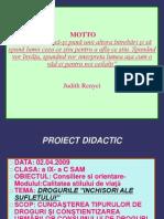 Drogurile Inchisori Ale Sufletului -Material Didactic
