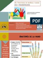 Anatomía de La Muñeca y La Mano3