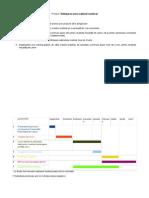 cabinet medical - diagrama gantt + obiective smart
