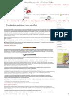 Chumbadores químicos, como escolher - PORTAL METÁLICA - Met@lica.pdf
