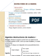 Agentes Destructores de La Madera (1)