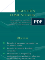 Autogesti n Comunitaria-presentacion