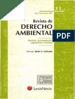 Municipio y Régimen Jurídico Ambiental_rda