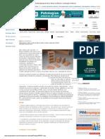Revista Equipe de Obra _Blocos Cerâmicos_ Construção e Reforma