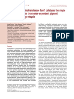 2008 Tryptophan-based Pigment in Ustilago Mol Microbiol