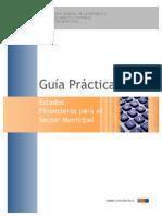 Estados Financieros Guía Práctica