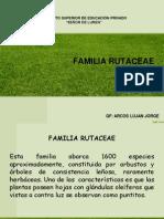 Familia Rutaceae