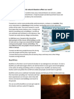how do natural disasters affect our word