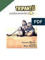 Historieta Mapuche