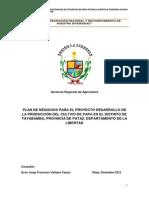 Plan de Negocios de Papa-tayabamba_2012