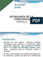 Neurologia de La Conciencia.