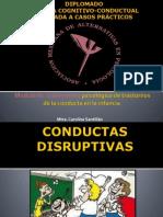 conductas disrruptivas