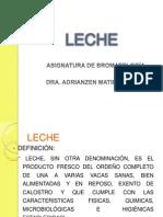 LECHE Y DERIVADOS LÁCTEOS.pptx