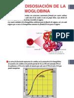 Curva de Disosiación de La Hemoglobina