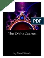 David Wilcock the Divine Cosmos