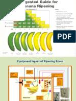 Banana Ripening System