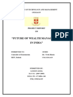 20750541 Report on Wealth Management