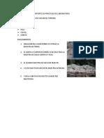 REPORTE DE PRACTICAS DE LABORATORIO.docx