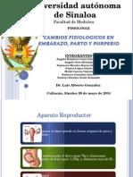 Cambio Fisiologicos en Embarazo, Pato y Purperio