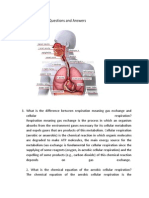 Respiratory System Questions and Answers Bios