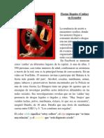 Educacion Ciudadania-Fiesta Ilegal
