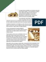 Historia de la vivienda.docx