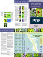Attracting Beneficial Insects with Native Flower Plants MSU e2973