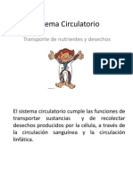 Sistema circulatorio 8°