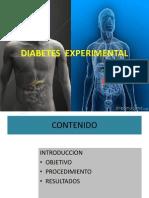 DIABETES EXPERIMENTAL 2014.pptx